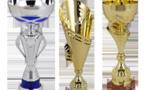 Résultats Championnat de la Sarthe Vétérans 2017/18