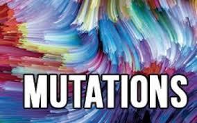 Mutations 2020/2021
