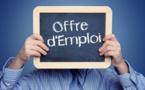 Ligue : Offre d'emploi